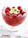 Raspberry dessert Royalty Free Stock Photo