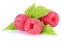 Raspberry fresh raspberries berry berries fruit with leaves isol Royalty Free Stock Photo