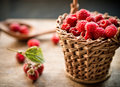 Raspberry freshly picked home grown Royalty Free Stock Photos