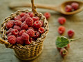 Raspberry freshly picked home grown Royalty Free Stock Image