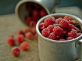 Raspberry freshly picked home grown Royalty Free Stock Photography