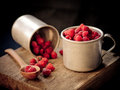 Raspberry freshly picked home grown Royalty Free Stock Photo