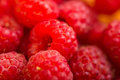 Raspberry fruit background red nature Stock Photos