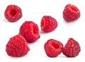 Raspberry fruit set isolated on white background Stock Image