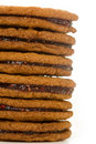 Raspberry Ginger Snap Stack Stock Images