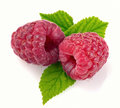 Raspberry with leaves on a white backgroun Royalty Free Stock Image