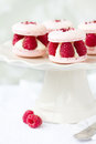 Raspberry macarons filled with fresh raspberries and cream Royalty Free Stock Images