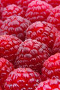 Raspberry macro background Royalty Free Stock Photography