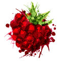 Raspberry made of colorful splashes on white background Stock Photo