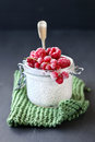 Raspberry,red currant and chia seeds pudding for breakfast Royalty Free Stock Photo
