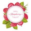 Raspberry round banner