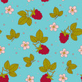 Raspberry seamless wallpaper bright design Royalty Free Stock Photography