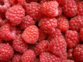 Raspberry texture Royalty Free Stock Images