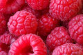 Raspberry texture background Stock Image