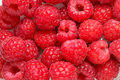 Raspberry texture background Royalty Free Stock Photos