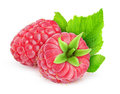 Raspberry two fresh raspberries over white background Royalty Free Stock Photo