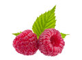 Raspberry on white Royalty Free Stock Photography