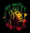 Rasta lion Royalty Free Stock Photo