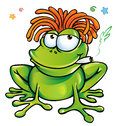 Rastafarian frog cartoon dreads Stock Photography