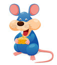 Rat eating cheese Stock Photos