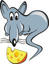 Rat & piece of cheese Royalty Free Stock Photography