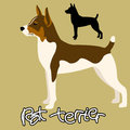Rat terrier vector illustration black silhouette