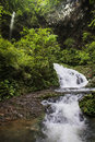Ravine stream in the black mountain valley beautiful Royalty Free Stock Images