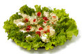 Ravioli with greens sour cream and ketchup dish isolated Stock Image