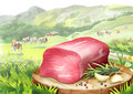 Raw beef fillet with rosemary, garlic and pepper on a plate in landscape with cows.
