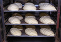 Raw bread on a baking sheet ready for baking. Royalty Free Stock Photo