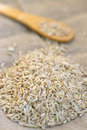 Raw brown rice and wooden spoon Stock Image