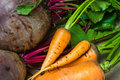 Raw carrots and beets Royalty Free Stock Photography