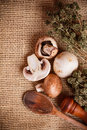 Raw champignon Stock Photo