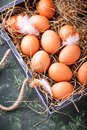 Raw chicken eggs in box Royalty Free Stock Photo