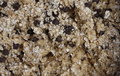 Raw Chocolate chips and oatmeal cookie batter Royalty Free Stock Photo