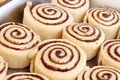 Raw cinnamon buns ready to bake Stock Photo