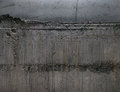 Raw concrete wall texture.