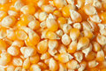 Raw corn kernels Royalty Free Stock Photo