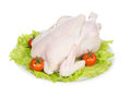Raw crude chicken on a plate garnished with vegetables salad tomatoes and greens isolated white background Stock Image