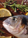 Raw dorado fish with rosemary and sea salt server on old wooden table Stock Photos