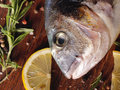 Raw dorado fish with rosemary and sea salt server on old wooden table Stock Images