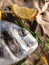 Raw dorado fish with rosemary and sea salt server on old wooden table Royalty Free Stock Photo