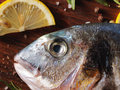 Raw dorado fish with rosemary and sea salt server on old wooden table Stock Image