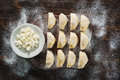 Raw dumplings with cottage cheese Royalty Free Stock Photo