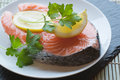 Raw fresh salmon cutlet steak with lemon and parsley garnish Royalty Free Stock Photo