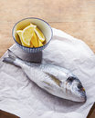 Raw gilt head bream on white paper with lemon Stock Image