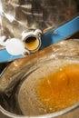 Raw honey Royalty Free Stock Photo