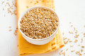 Raw oats seeds Royalty Free Stock Photo