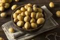 Raw Organic Baby Gold Potatoes