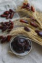 Raw Organic Fresh dates together with fint jam and dry branch from dates Royalty Free Stock Photo
